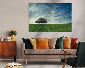 Dé boom van Yvonne Blokland