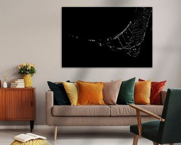 Connection2 van Forestia Arts