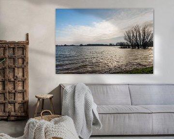 Hoogwater in Buitenpolder Het Munnikenland von Ruud Morijn
