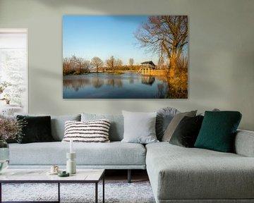 Hautes eaux dans la Groesplaat sur Ruud Morijn