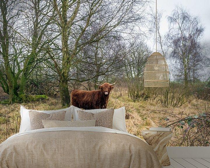 Sfeerimpressie behang: Schotse Hooglander in een natuurgebied van Ruud Morijn
