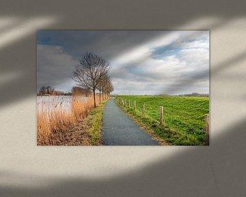 Fietspad langs het water van een oude kreek van Ruud Morijn