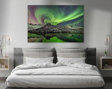 Noorderlicht, poollicht of Aurora Borealis in de nachtelijke hemel boven de Lofoten in Noorwegen van Sjoerd van der Wal
