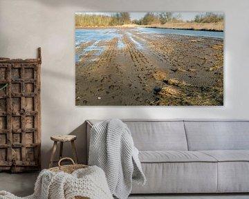 Ondergelopen terrein Brabantse Biesbosch von Ruud Morijn