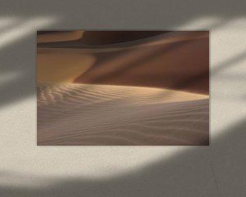 Sahara Woestijn van Niels Rijsenbrij