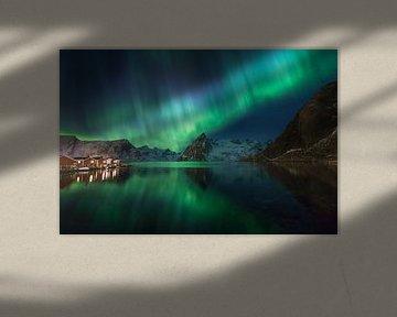 Noorderlicht in Hamnoy (Lofoten). van Sven Broeckx