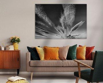 Wolkenkrabber (zwart-wit) von Peter Postmus