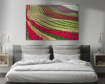 Les tulipes van Georges Rudolph