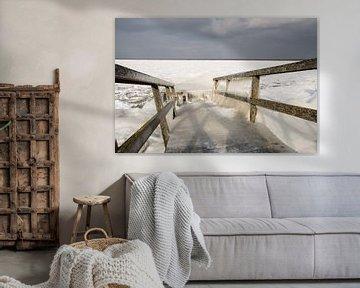 Winter in Holland 2018 van Erika Schouten