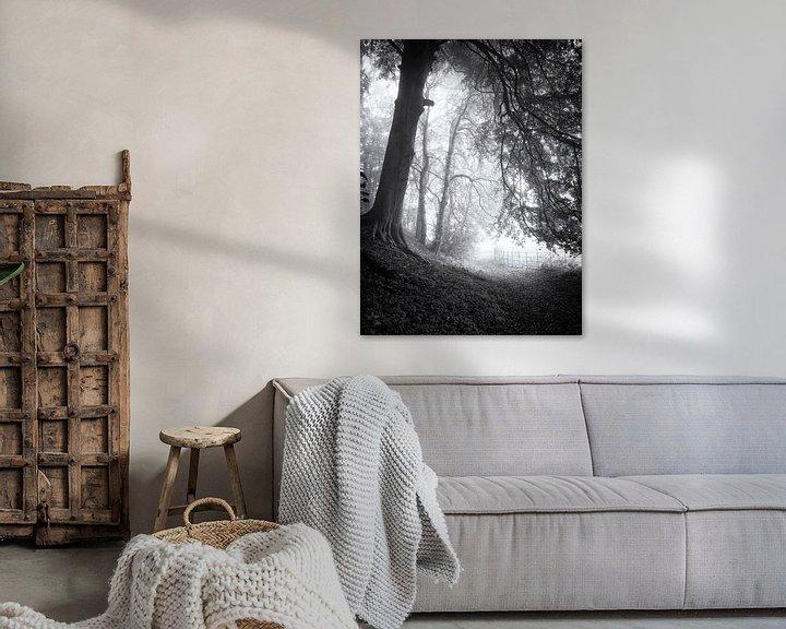 Sfeerimpressie: Bospad in de mist van Paul Beentjes