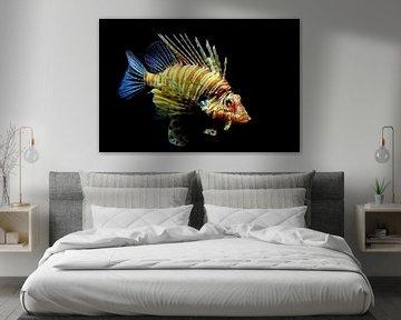 Le poisson-lion rouge