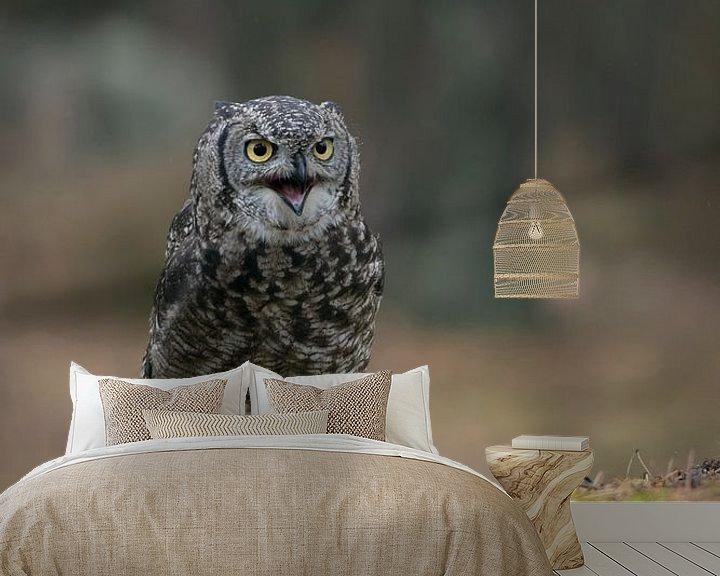 Sfeerimpressie behang: so funny... Great Horned Owl / Tiger Owl * Bubo virginianus * van wunderbare Erde