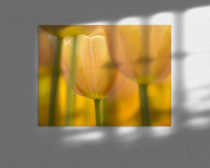 Sfeerimpressie: Tulp  (pasteltint) van Marco Liberto