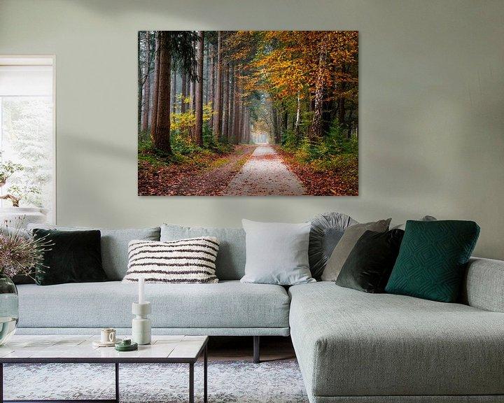 Sfeerimpressie: Veelkleurige ochtend van Tvurk Photography