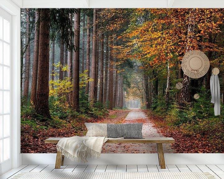 Sfeerimpressie behang: Veelkleurige ochtend van Tvurk Photography