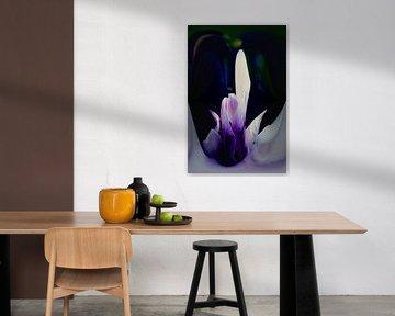 Fleur de Magnolia - abstrait en violet sur Christine Nöhmeier