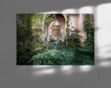 Verlassene Kirche von Pflanzen nachgedruckt. von Roman Robroek