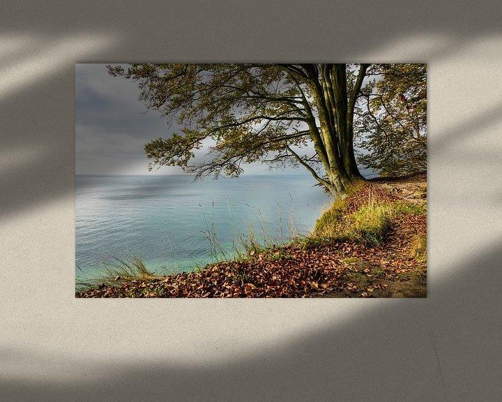 Beispiel: Die Ostseeküste auf der Insel Rügen im Herbst von Rico Ködder