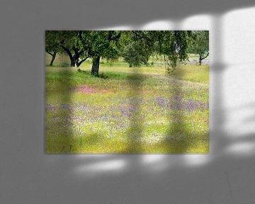 bloemenzee onder kurkeiken
