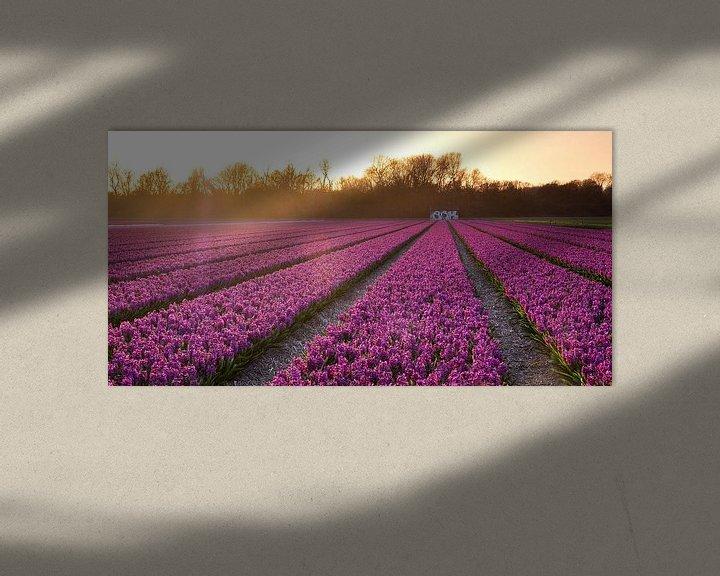 Sfeerimpressie: Bollenveld van Jeroen Linnenkamp