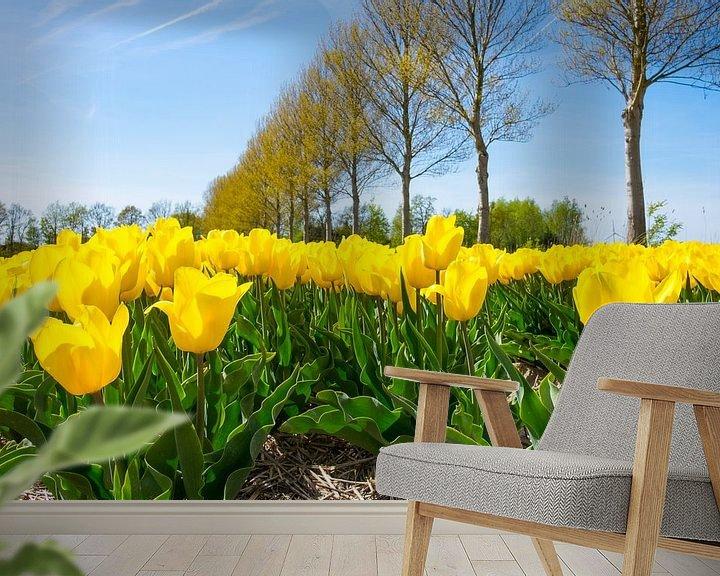 Sfeerimpressie behang: Gele tulpen op in de polder in flevoland  van Sjoerd van der Wal