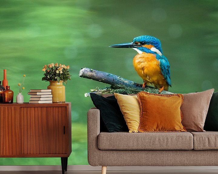 Sfeerimpressie behang: IJsvogel zittend op een tak bij een vijver van Sjoerd van der Wal