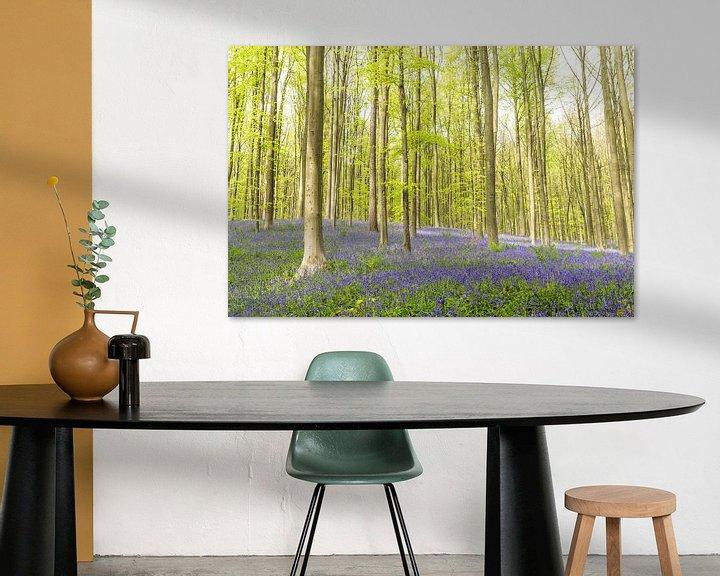 Sfeerimpressie: Wilde hyacinten bloeien in een beukenbos tijdens een de lenteochtend van Sjoerd van der Wal