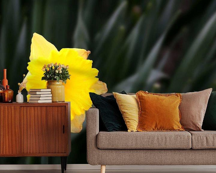 Sfeerimpressie behang: Gele Narcis van Henk Langerak