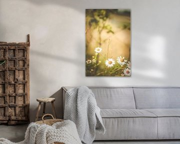 natuur bloemen von Anne-Fleur Eggengoor