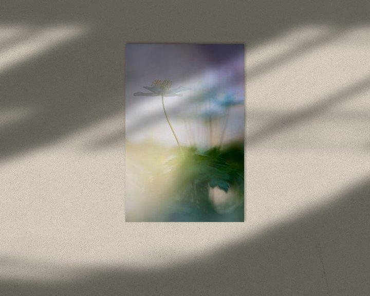 Sfeerimpressie: Sfeer opname van Bosanemoon van Mark Scheper