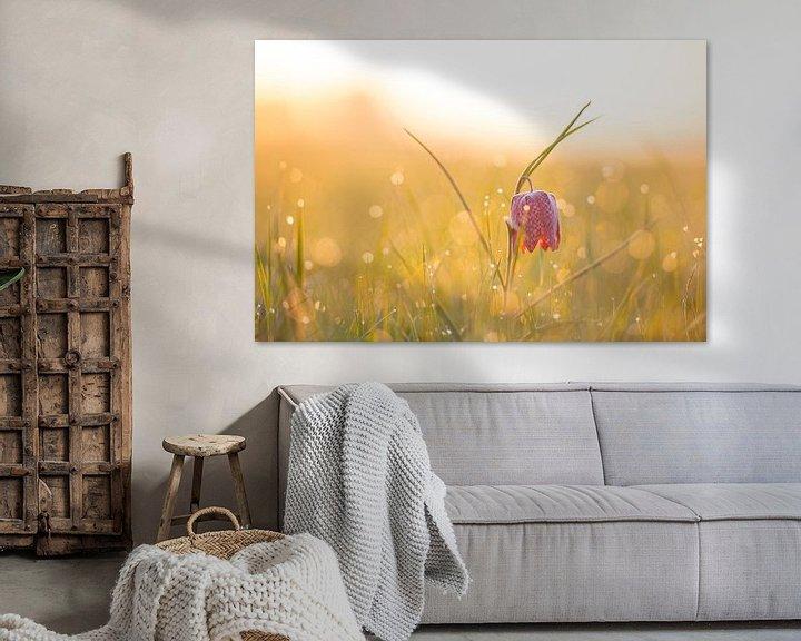 Sfeerimpressie: Kievitsbloemen  in een veld tijdens een prachtige lente zonsopkomst met dauwdruppels op het gras. van Sjoerd van der Wal
