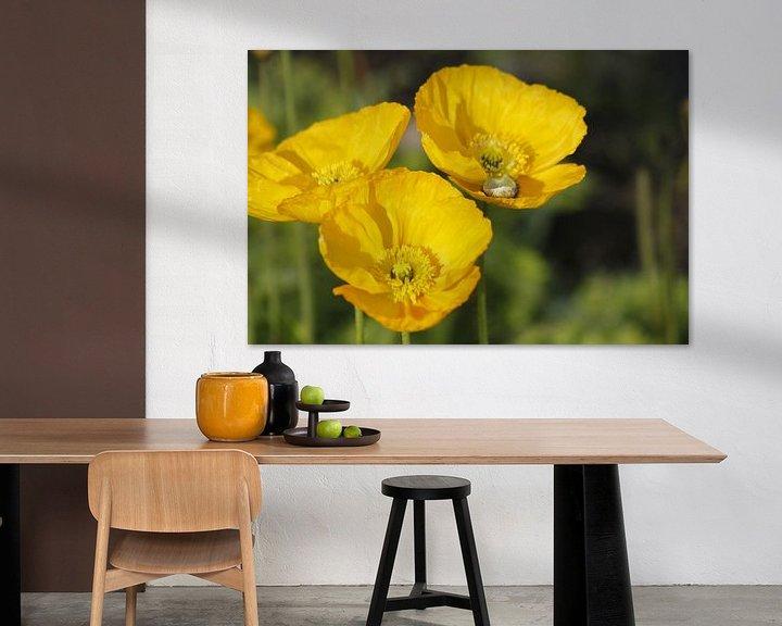 Sfeerimpressie: Voorjaarsbloemen van Inge Teunissen