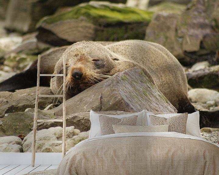 Sfeerimpressie behang: Slapende zeehond van Inge Teunissen