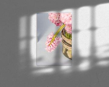 Baby roze hyacinten von Petra Brouwer