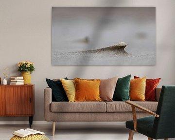 Frankrijk Opaalkust van Peter Tieleman