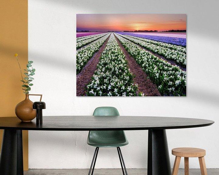 Sfeerimpressie: kleurrijk bloembollenveld tijdens de lente van eric van der eijk
