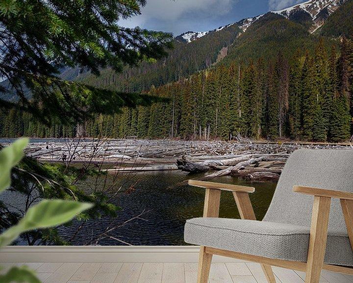 Sfeerimpressie behang: Drijfhout in een rivier in Canada van Menno Schaefer