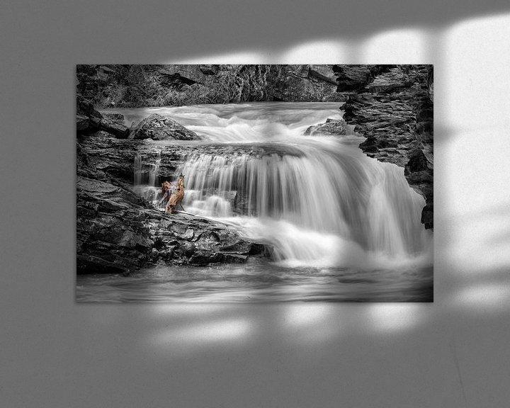 Sfeerimpressie: Waterval in de Johnston Canyon van Menno Schaefer