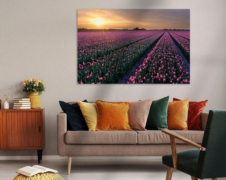 Sfeerimpressie: rode tulpen in een bloembollenveld tijdens de lente van eric van der eijk
