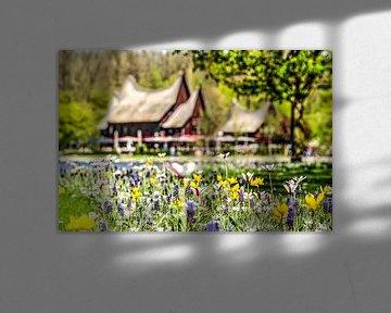 Voorjaar bij de Kralingse Plas