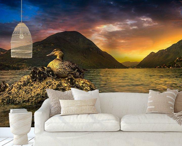 Sfeerimpressie behang: eenden aan het luganomeer van Rubin Versigny
