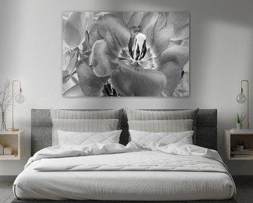 Schwarz-Weiß-Tulpen von Marianne Twijnstra-Gerrits