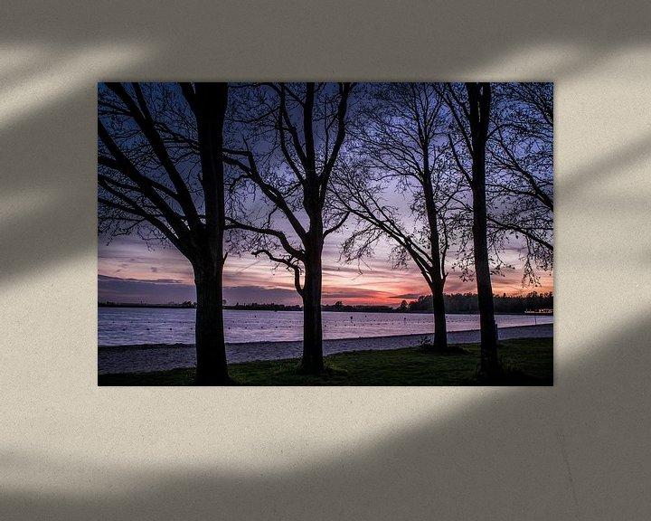 Sfeerimpressie: Bomen aan het meer van michael regeer