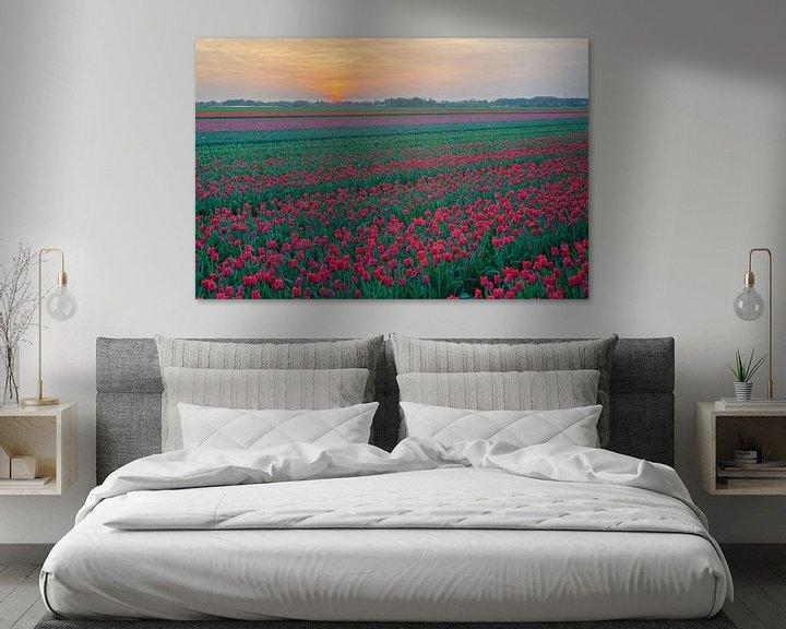 Beispiel: Tulpen in Drenthe von Rene Mensen