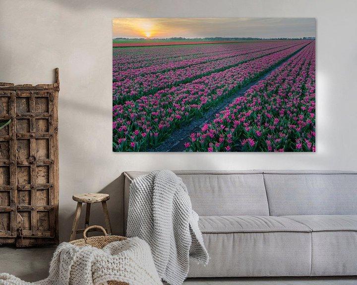 Beispiel: Tulpen von Rene Mensen