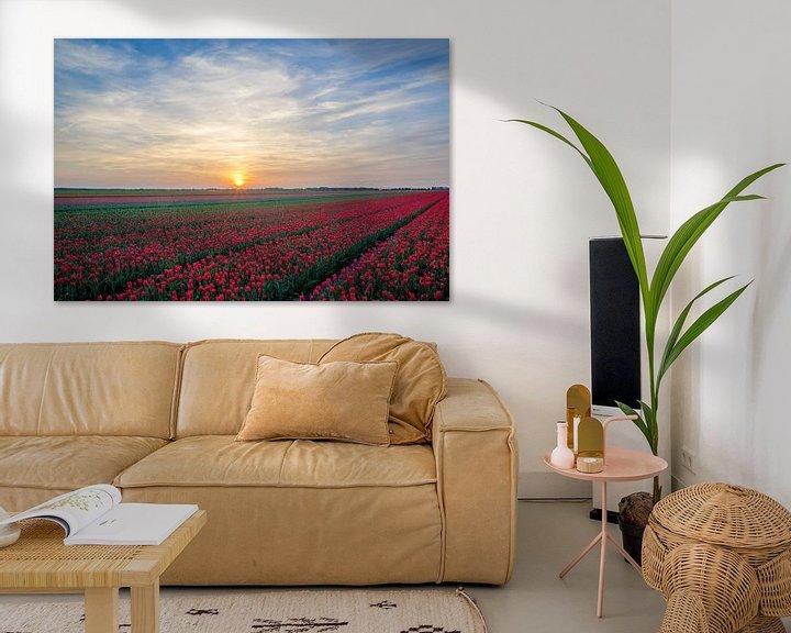 Beispiel: Rode tulpen von Rene Mensen