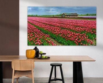 Bollenveld met rode Tulpen van Caroline Lichthart