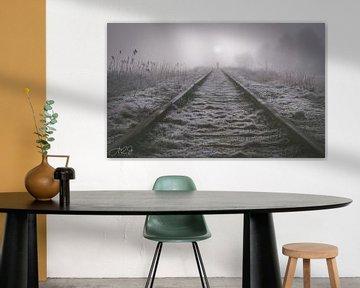 Verloren im Nebel von A2J Photography