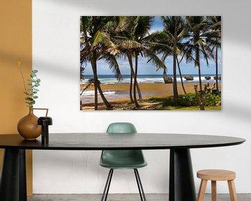 Westkust Barbados von Elly Damen