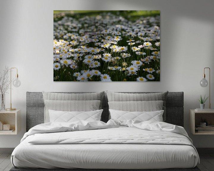 Sfeerimpressie: daisy van Erich Werner